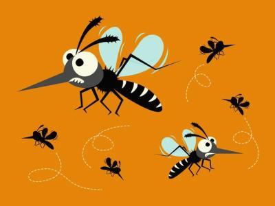 蚊子已经够烦人了,但它传播的这种病更折磨人