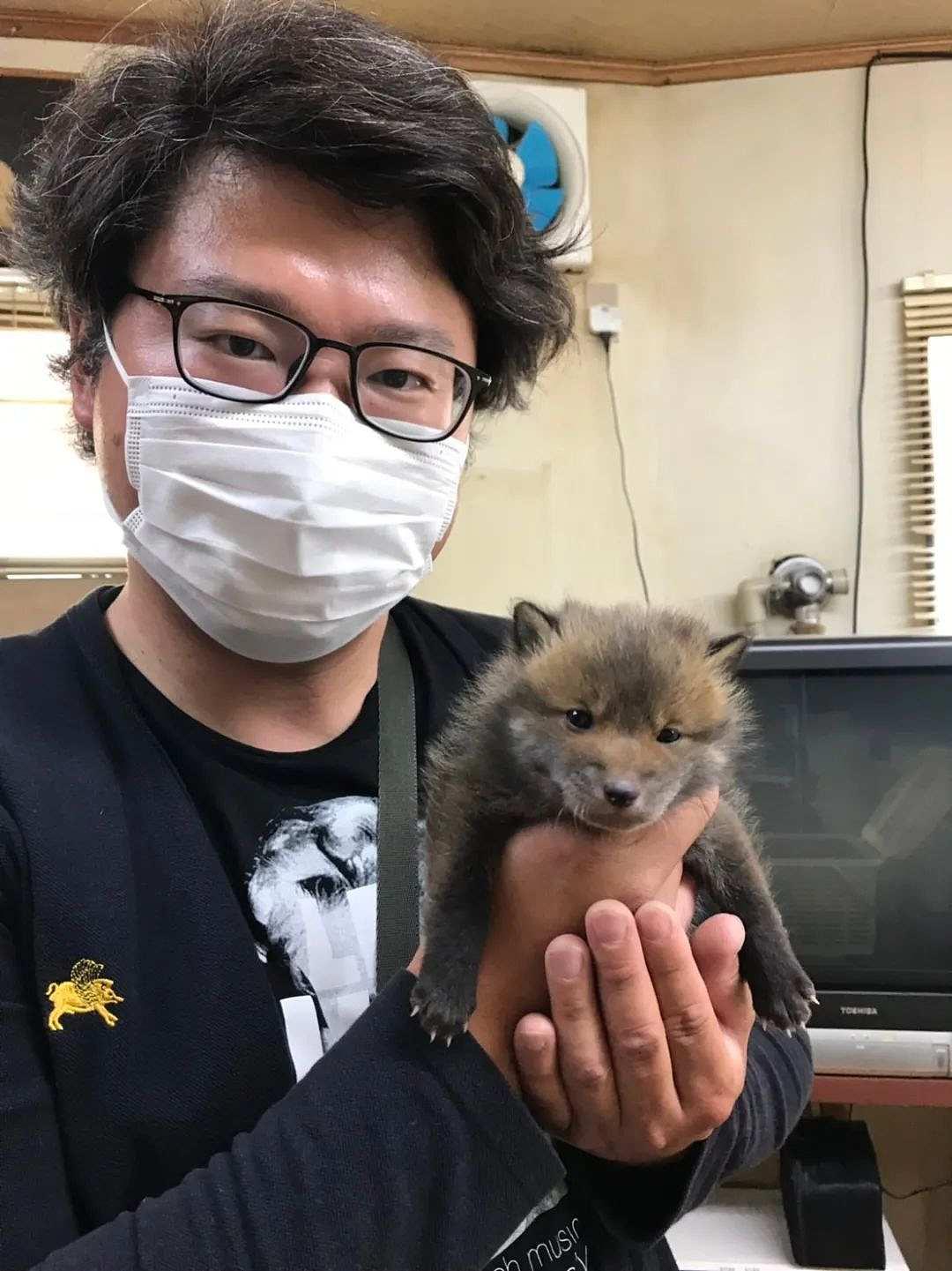 日本网友路边捡了只小奶狗,网友却纷纷劝他:赶紧送走!